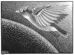 the First Day of the Creation, by Escher
