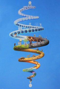 spiral-evolution