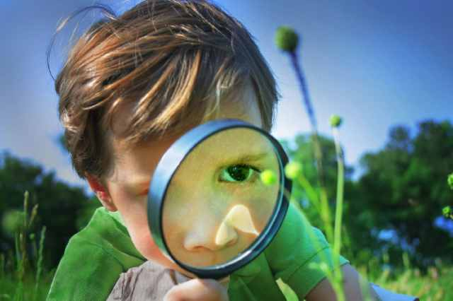 2.-How-to-use-a-magnifying-glass-for-your-purpose